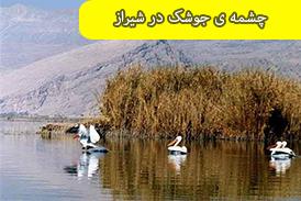 چشمه ی جوشک در شیراز